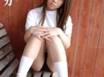 体操着(ブルマ)コレクションvol.2/近藤ミカ
